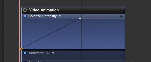 animazione-grafico